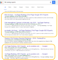 Fife Ranking Experts, Fife SEO expert, dominating above all natural organic results.png